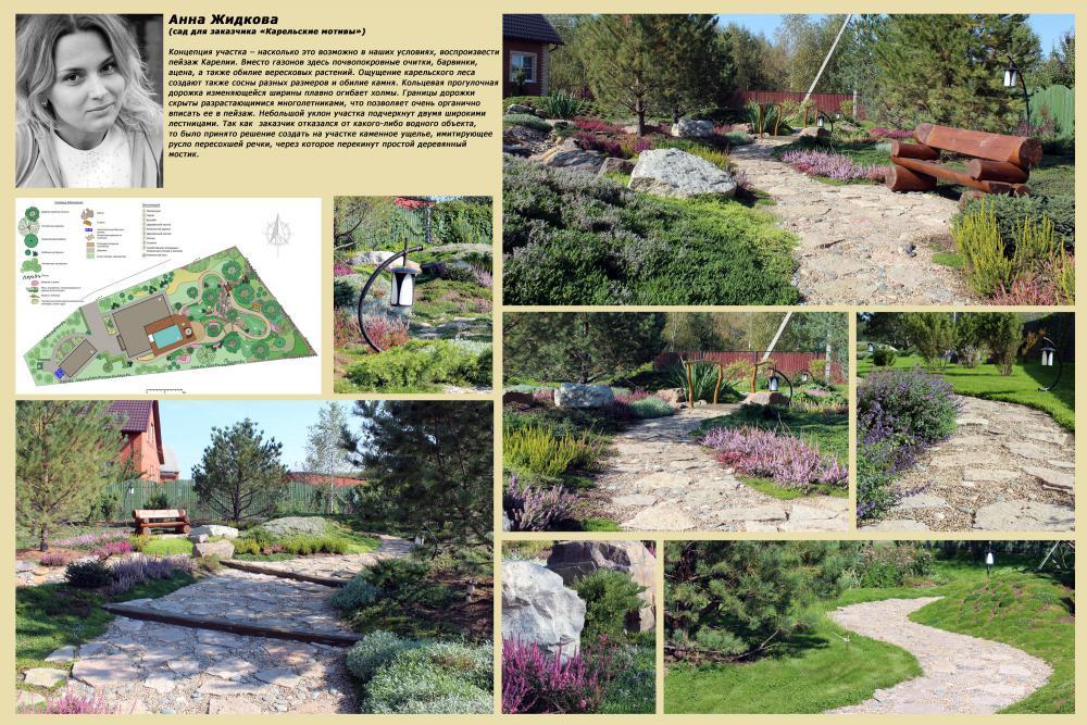 Зеленая стрела ландшафтный дизайн